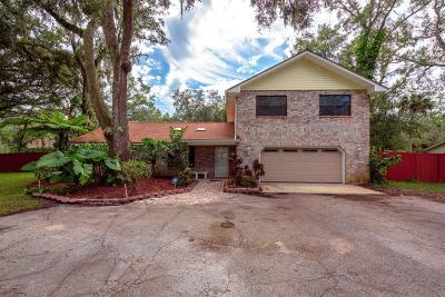 Port Orange Single Family Home For Sale: 2041 Avocado Drive