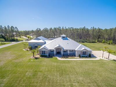 Port Orange Single Family Home For Sale: 2125 W Spruce Creek Circle