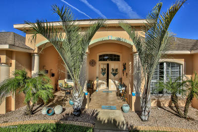 Port Orange Single Family Home For Sale: 6079 Shallow Brook Court