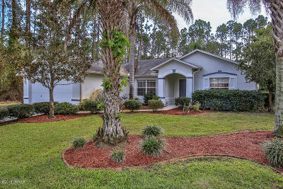 Palm Coast Single Family Home For Sale: 74 Pin Oak Drive