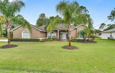 Palm Coast Single Family Home For Sale: 18 Princess Kathleen Lane