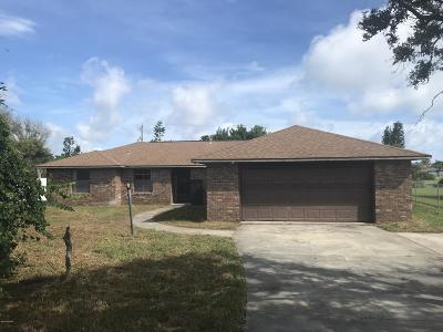 Ormond Beach Single Family Home For Sale: 121 Mariners Drive