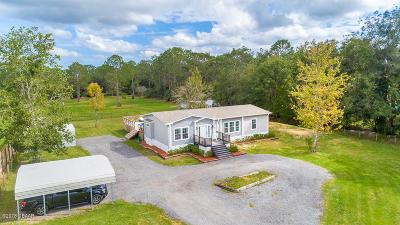 Port Orange Single Family Home For Sale: 2381 Old Samsula Road