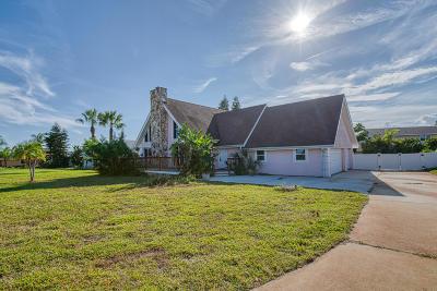 Daytona Beach Single Family Home For Sale: 2924 S Peninsula Drive
