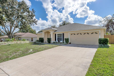 Port Orange Single Family Home For Sale: 841 Stony Point Drive