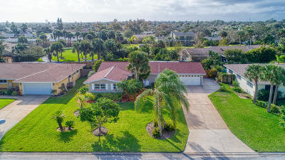 Ormond Beach Single Family Home For Sale: 210 Ellicott Drive