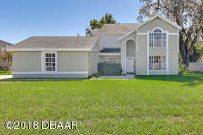 Port Orange Single Family Home For Sale: 449 Champagne Circle