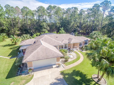 Port Orange Single Family Home For Sale: 2499 Jerry Circle