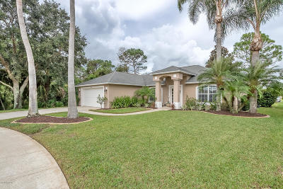 Port Orange Single Family Home For Sale: 801 Crosswind Way