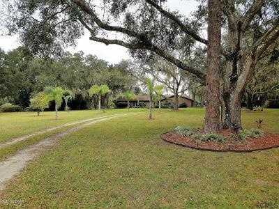Ormond Beach Single Family Home For Sale: 141 Buckskin Lane