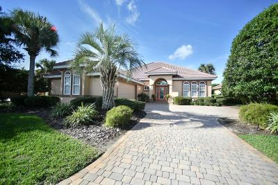 Palm Coast Single Family Home For Sale: 28 E Oak View Circle