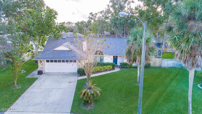 Volusia County Single Family Home For Sale: 5578 Mossy Oak Lane