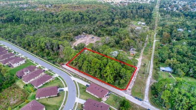 Volusia County Residential Lots & Land For Sale: Flomich Street