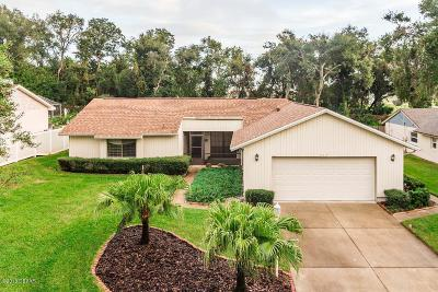 Ormond Beach Single Family Home For Sale: 943 Northbrook Drive