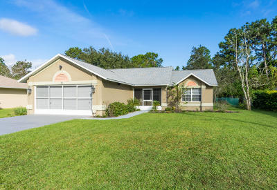 Palm Coast Single Family Home For Sale: 15 Pickering Drive