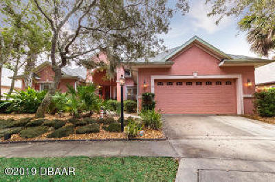 Palm Coast Single Family Home For Sale: 10 Grandview Drive