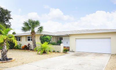 South Daytona Single Family Home For Sale: 147 Coral Circle