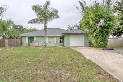 Port Orange Single Family Home For Sale: 84 Tumbler Drive