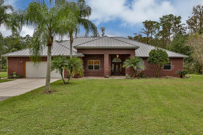 Port Orange Single Family Home For Sale: 2189 Avocado Drive