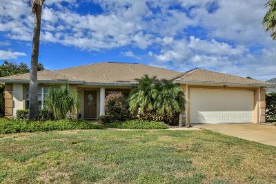 Ormond Beach Single Family Home For Sale: 111 Heron Dunes Drive