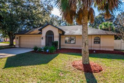 Palm Coast Single Family Home For Sale: 66 Pine Brook Drive