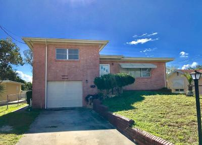 Daytona Beach Single Family Home For Sale: 256 Morningside Avenue