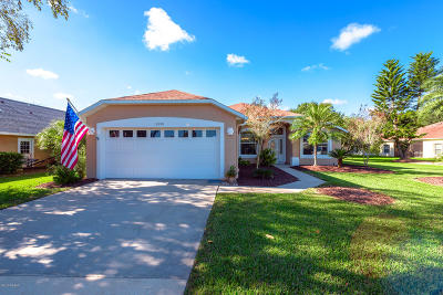 Port Orange Single Family Home For Sale: 6290 Cypress Springs Parkway
