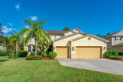 Daytona Beach Single Family Home For Sale: 457 Bayberry Lakes Boulevard