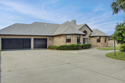 Ormond Beach Single Family Home For Sale: 17 Julie Drive