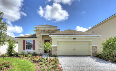 Mosaic Single Family Home For Sale: 124 Azure Mist Way
