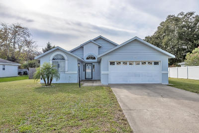 Port Orange Single Family Home For Sale: 3492 Winchester Drive