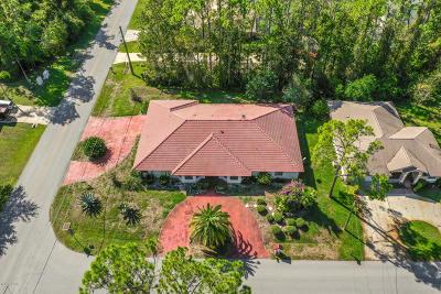 Palm Coast Single Family Home For Sale: 1 Pepperdine Drive