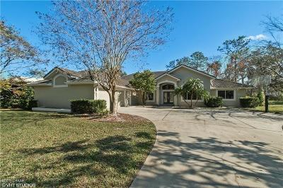 Ormond Beach Single Family Home For Sale: 62 Coquina Ridge Way
