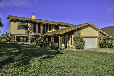 Ormond Beach Single Family Home For Sale: 73 Sandcastle Drive