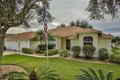Port Orange Single Family Home For Sale: 1790 Arash Circle