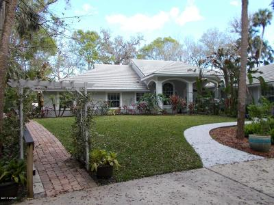 New Smyrna Beach Single Family Home For Sale: 1951 Waterford Estates Drive