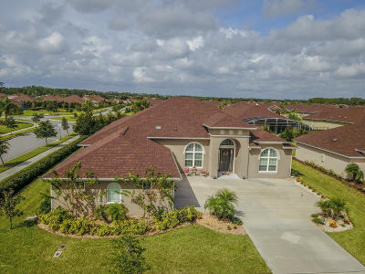 New Smyrna Beach Single Family Home For Sale: 524 Luna Bella Lane