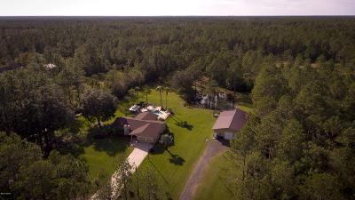 Ormond Beach Single Family Home For Sale: 435 Needles Drive