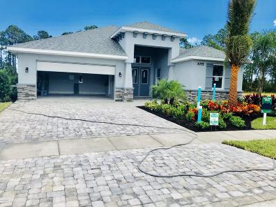 New Smyrna Beach Single Family Home For Sale: 3009 King Palm Lot 118