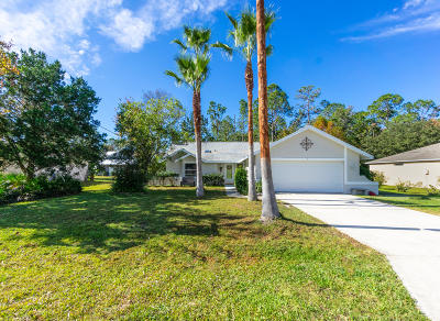 Palm Coast Single Family Home For Sale: 3 Zammer Court