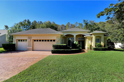 Spruce Creek Fly In Single Family Home For Sale: 1924 Southcreek Boulevard