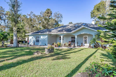 Port Orange Single Family Home For Sale: 919 Samms Avenue