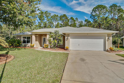 Palm Coast Single Family Home For Sale: 36 Kalamazoo Trail