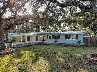 New Smyrna Beach Single Family Home For Sale: 636 Yupon Avenue