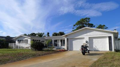 Ormond Beach Single Family Home For Sale: 17 Marvin Road