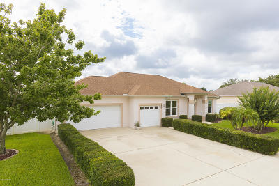Port Orange Single Family Home For Sale: 5894 Plainview Drive