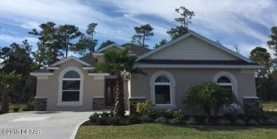 Port Orange Single Family Home For Sale: 708 Victory Lane
