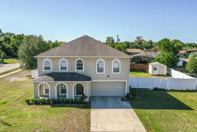 Deltona  Single Family Home For Sale: 1270 Babcock Avenue