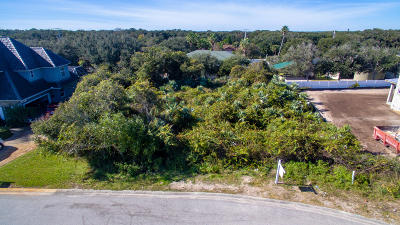 Ponce Inlet Residential Lots & Land For Sale: 78 Inlet Point Boulevard