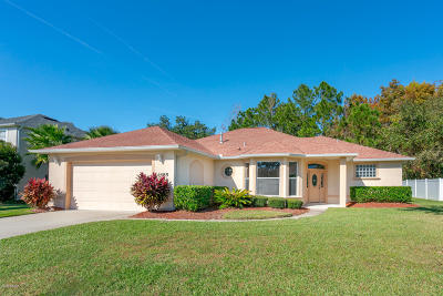 Port Orange Single Family Home For Sale: 1485 Nappa Drive